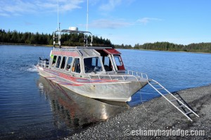 Whittier Express holds up to 14 passengers for travel in Prince William Sound